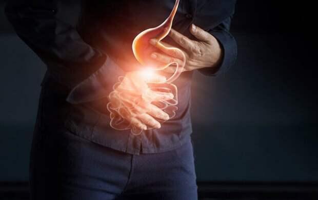 Как перезагрузить биом кишечника