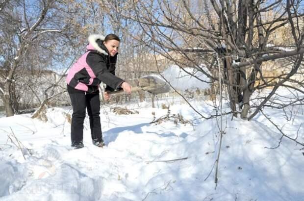 Бесполезная мера. /Фото: dokzone.ru.