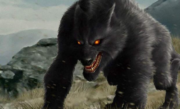 Огромные волки, перед которым остальные трепещут
