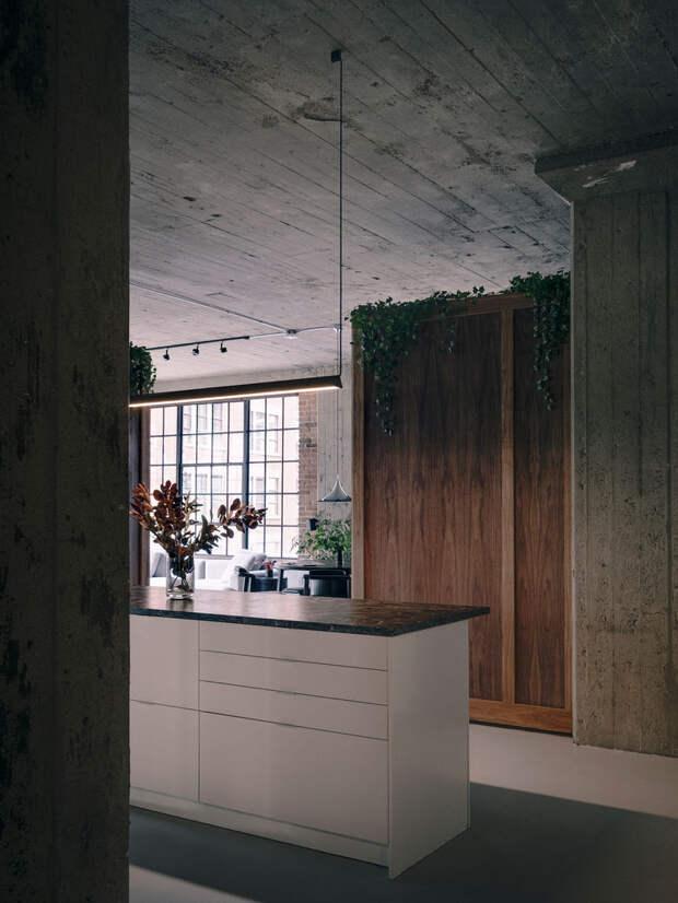Стильный лофт с живыми растениями в Монреале