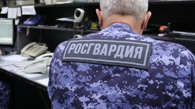 Росгвардия усилит меры безопасности на время проведения Евро-2020 в Петербурге