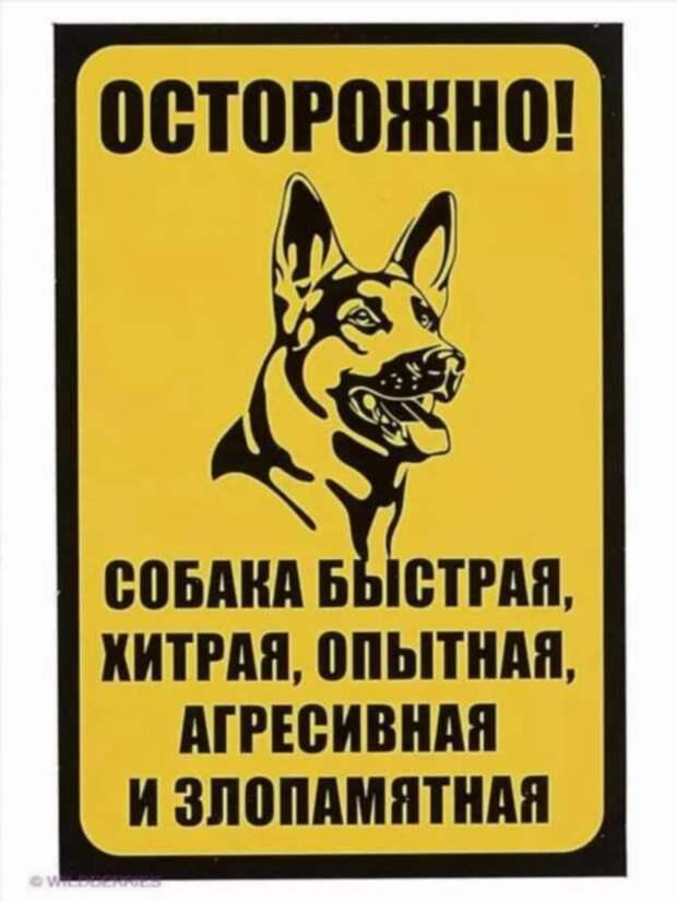 Предупреждающие таблички. Прикольные. Подборкаchert-poberi-tablichki-12110417082020-14 картинка chert-poberi-tablichki-12110417082020-14