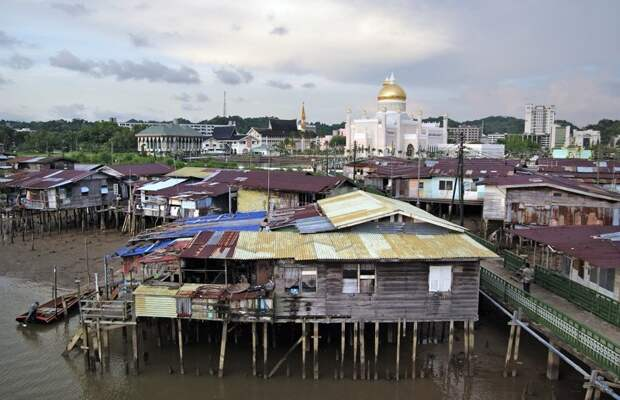 На зависть Бабе-Яге: современные дома на сваях город, дом, сваи, эстетика