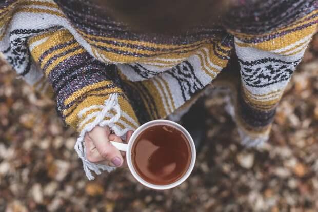 Для участников паркрана в Кузьминках организовали благотворительную чайную паузу