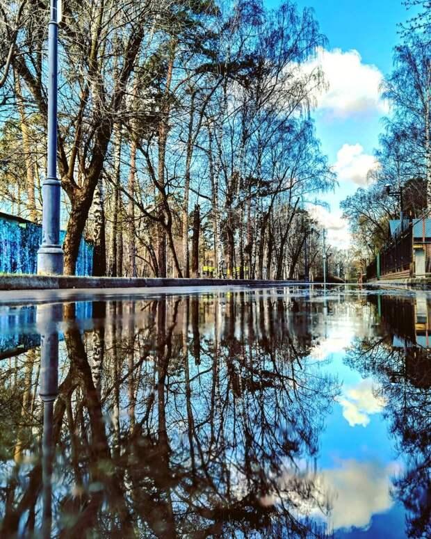 Фото дня: двойное небо в Лосинке