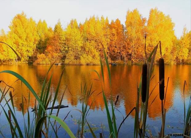 Красоты России (#615)
