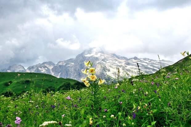 Вид на вершину горы Фишт