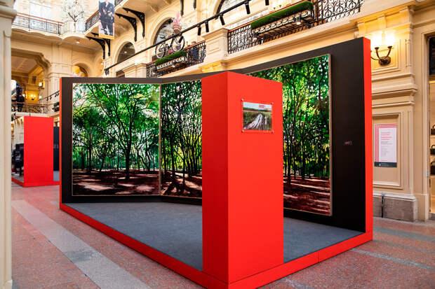 Какие произведения современного искусства можно увидеть в ГУМе (ФОТО)