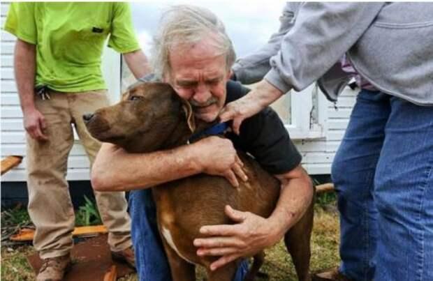 Мужчина спас больную собаку, потратив накопленные за всю жизнь деньги