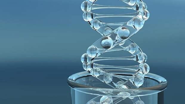 Шведские ученые успешно секвенировали геном жившей 35 тысяч лет назад женщины