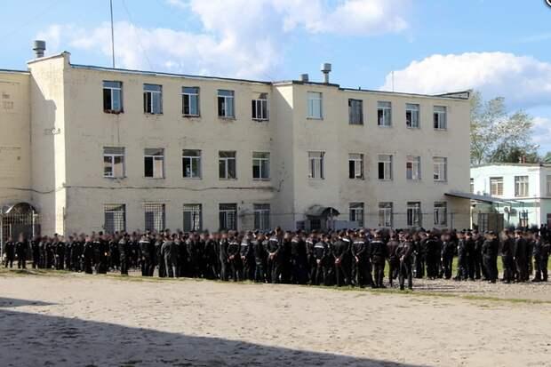Дело возбудили после новых избиений осуждённых в ярославской колонии