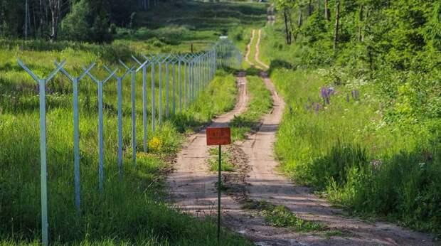 Литва отгородится от Белоруссии забором за 15 миллионов евро