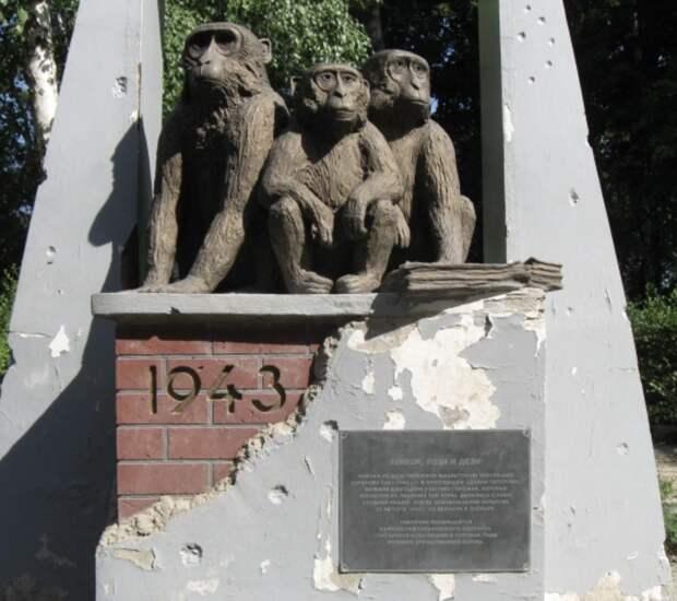 Удивительная история 3-х обезьянок из Харькова, которые пережили военное время