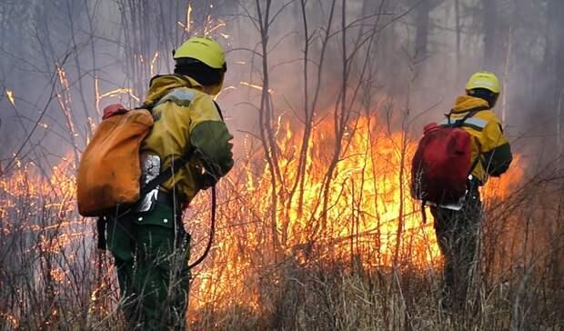 Свердловчане задыхаются отгари исмога: врегионе бушуют 6 лесных пожаров