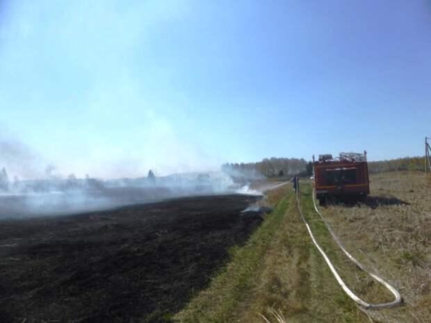 Из-за омича в Азовском районе сгорели пять дач: мужчина сжигал траву в бочке