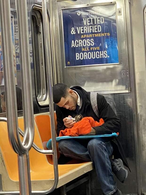 Фото незнакомца с котенком в метро возвращает веру в человечество