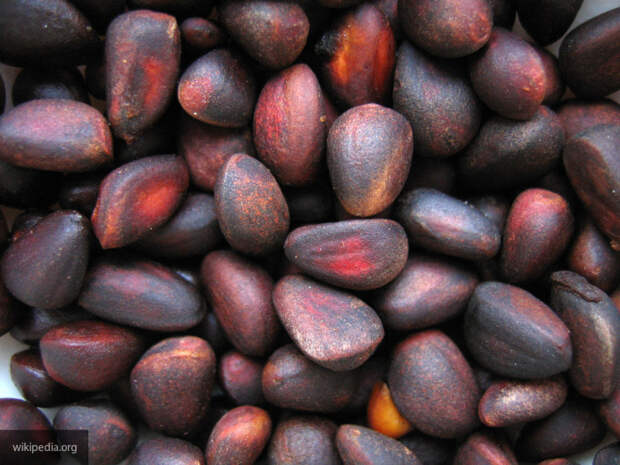 Кедровые орехи оказались эффективными защитниками иммунитета