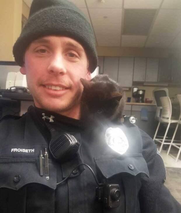 Полицейский спас из снежного сугроба котенка и оставил у себя