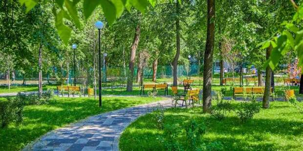 Депутат МГД Головченко напомнил об опасности борщевика и необходимости борьбы с ним