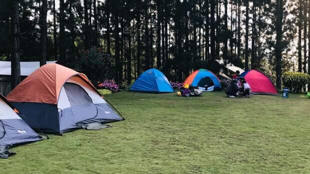 Сектантка снимала порно с детьми в палаточном лагере в Ленобласти