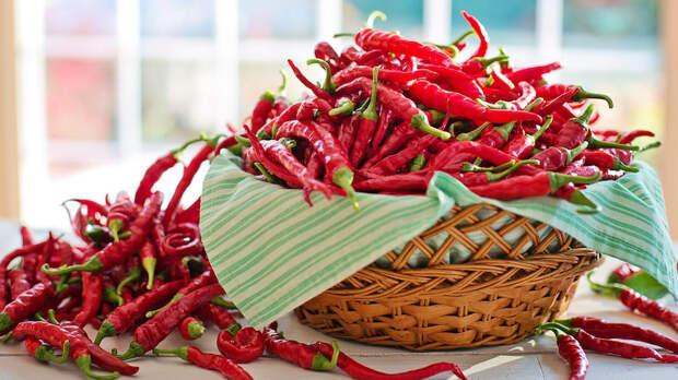 Все о пользе и вреде красного острого перца для здоровья
