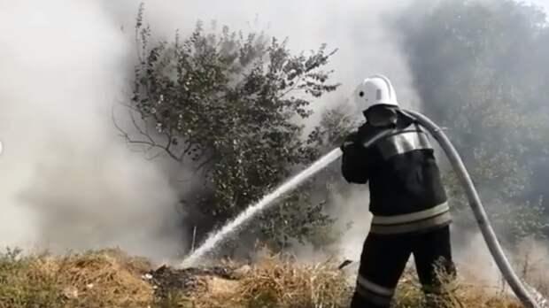 Число ландшафтных пожаров выросло вРостове