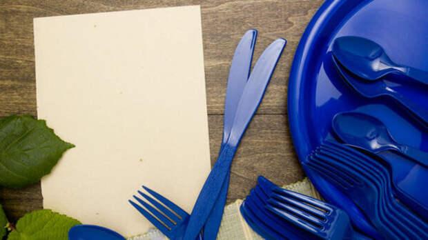 В России могут запретить продажу пластиковой посуды: подробности