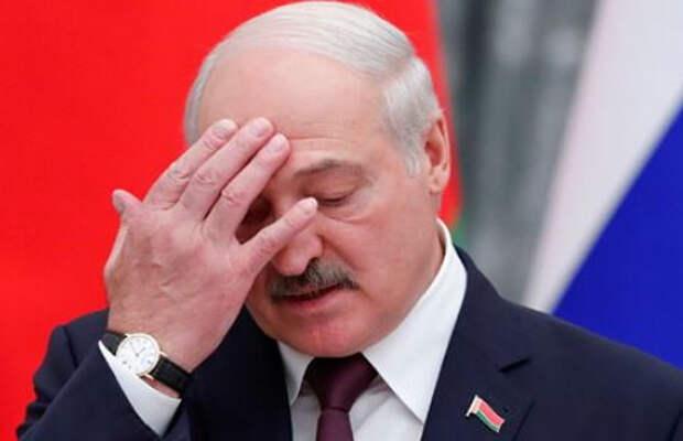 Лукашенко отказался разговаривать с Западом до снятия «безмозглых санкций»