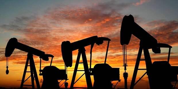 В Минприроды оценили обеспеченность России нефтью и газом