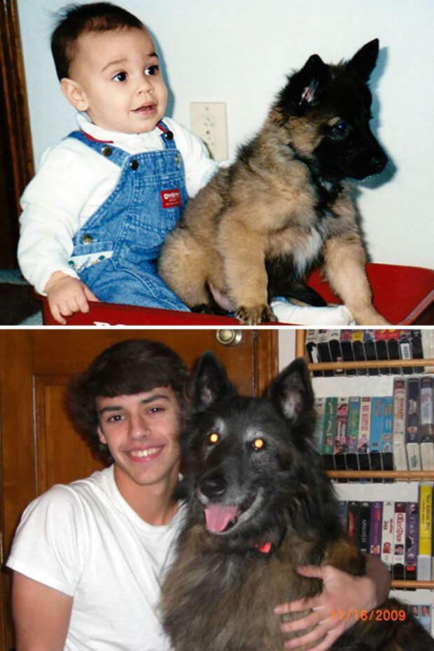 Аарон и Скай до и после, друзья, собаки, фото