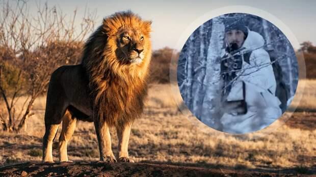 «Он всю жизнь был идиотом». Фанаты отвернулись от Златана после того, как он застрелил льва и забрал домой кожу, череп и челюсть