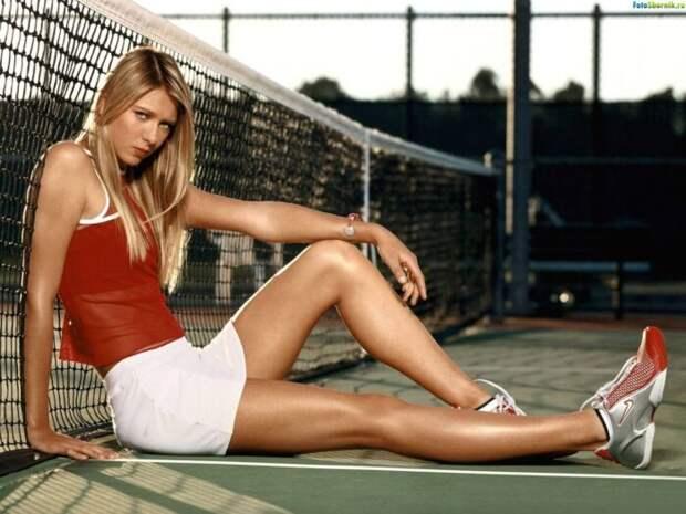 Вот такое ранчо купила себе теннисистка Мария Шарапова в США