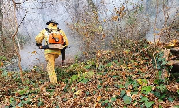 В Сочи тушат три очага возгорания лесной подстилки