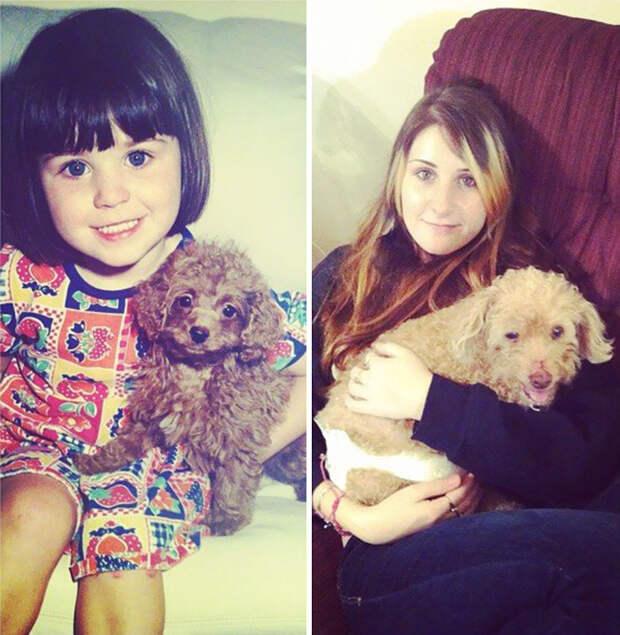 Люси. Была со мной 16 лет до и после, друзья, собаки, фото