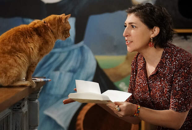 Call Me Kat Renewed for Season 2 at Fox Amid Backstage Shakeup