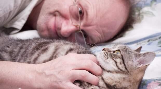 Блог Павла Аксенова. Анекдоты от Пафнутия. Фото Pugovica88 - Depositphotos