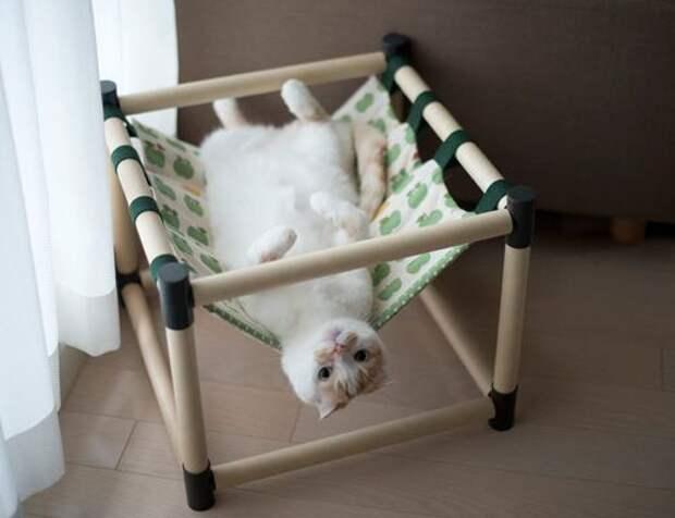 Зависалка для кота