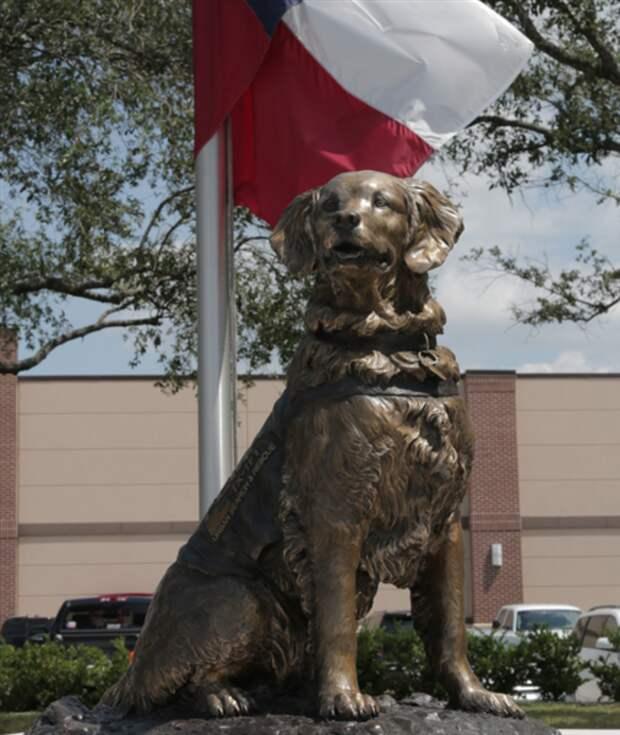 statue_of_bretagne_the_dog_b472742e511606e8f7d21810afccfeda.today-inline-large