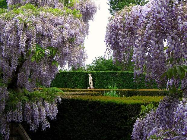 Сады замка Сиссингхёрст.