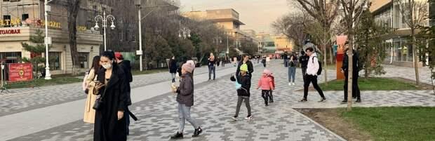 Перепись населения 2021: сколько заплатят интервьюерам в Алматы
