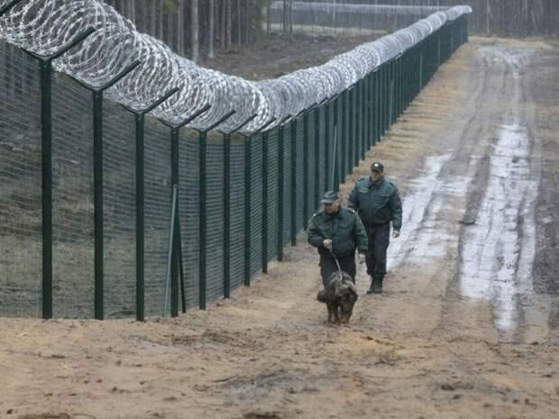 Еще раз: Это забор от танков по латышски: афера века, бизнес, деньги, прибыль