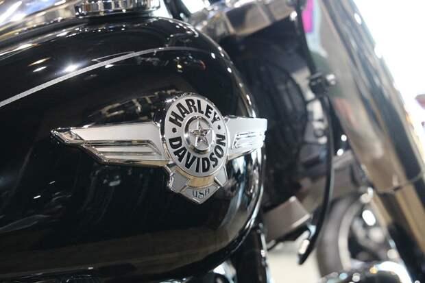 Автоэксперт Моржаретто пролил свет на будущее электромотоцикла Harley-Davidson
