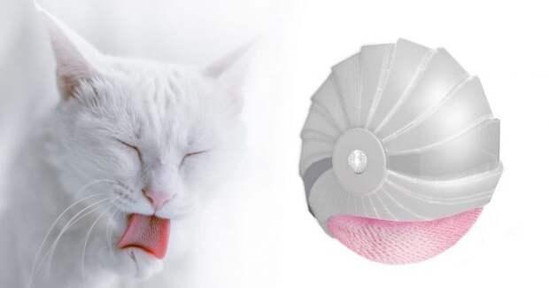 Россиянка придумала механический «кошачий язык», который заменит принятие душа или ванны