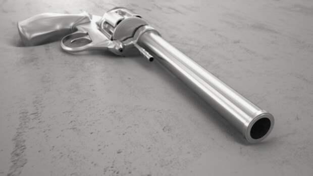 Росгвардия предложила меры по ужесточению оборота гражданского оружия