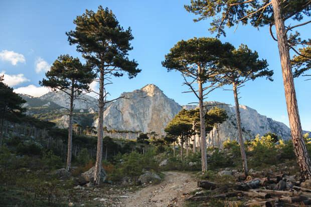Дорога к скале Шаан-Кая