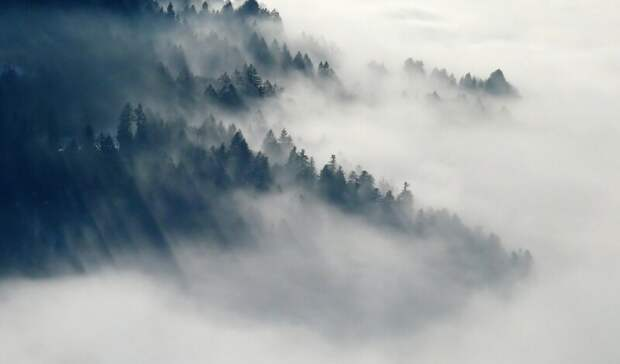 Предупреждение объявили вРостовской области из-за тумана на1 и2мая
