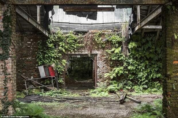 Разрушенная фабрика в Германии