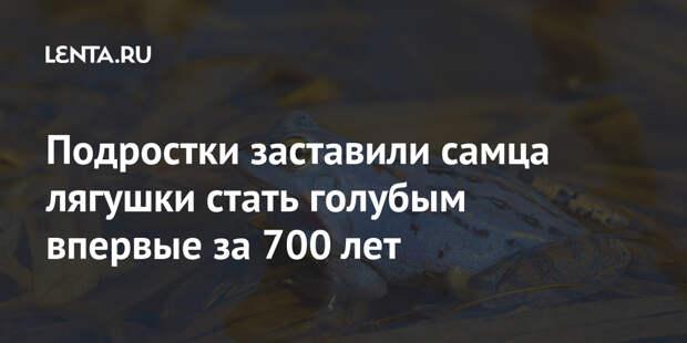 Подростки заставили самца лягушки стать голубым впервые за 700 лет