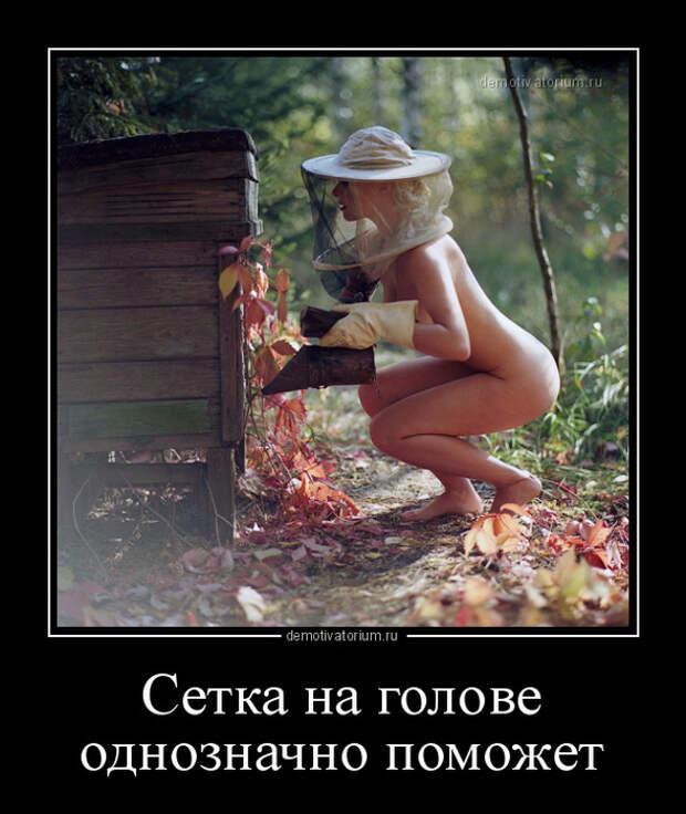5402287_demotivatorium_ru_setka_na_golove_odnoznachno_pomojet_153382 (589x700, 162Kb)