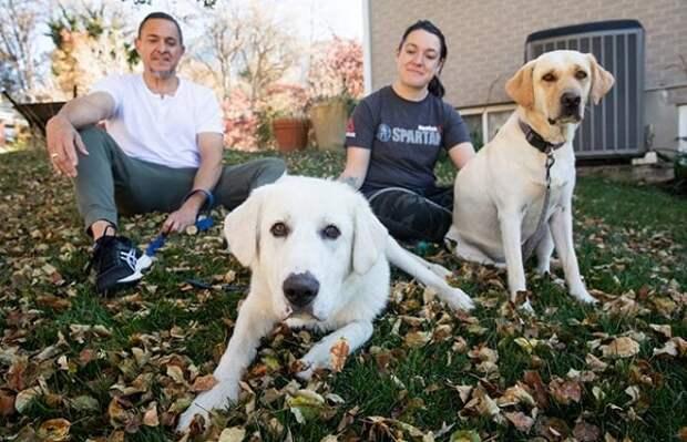 Пёс хотел быть частью чьей-то семьи, а не «работать» на ферме, за что его и бросили в приюте